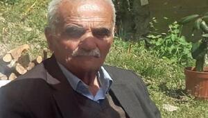 Yaylada başına yorgun mermi isabet eden yaşlı adam öldü