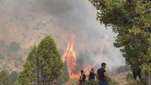 Kahramanmaraşta 5 hektar ormanlık alan yandı