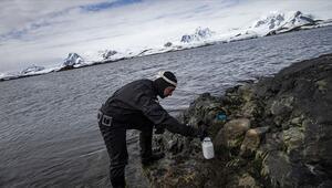 Kişisel bakım ürünleri Antarktika kıyılarını da kirletti
