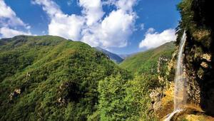 Türkiye'nin canlı çeşitliliği açısından en zengin 10 dağı