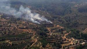 Şirincede orman yangını