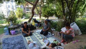 Parkta yaşayan ailenin dramı yürekleri burkuyor