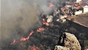 Kanarya Adalarındaki yangında 12 bin hektardan fazla alan kül oldu