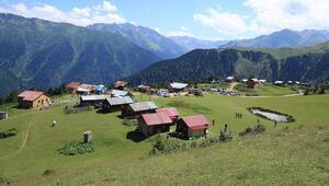 Doğu Karadenizin yeni gözdesi Yeşil doğası ve muhteşem manzarasıyla ilgi çekiyor...