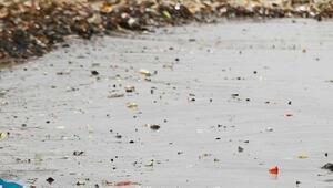 Dünya Sağlık Örgütünden mikroplastik çağrısı