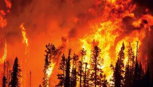 10 maddede orman yangınıyla mücadele Yaşatmak bir ömür sürer, yakmak bir dakika...