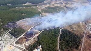 Gaziemirde orman yangını