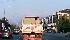 Boluda kamyon kasasında tehlikeli yolculuk