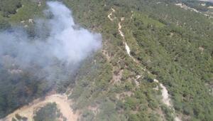 Buldanda 1 dekar ormanlık alan yandı
