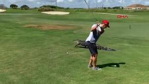 Timsaha rağmen golf oynamaya devam etti