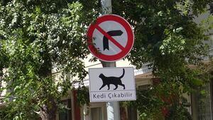 Avcılarda alkışlanacak hareket Kediler için tabela astılar