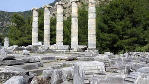 Prienenin, UNESCOnun kesin listesinde yer alması için güç birliği