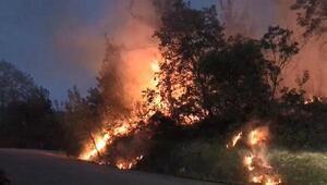 Jandarmanın dikkati sayesinde orman yangını büyümeden söndürüldü
