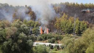 Son dakika... Perge Antik Kenti yakınında orman yangını