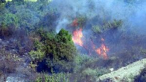 Sürücü yanan brandayı attı, 1 hektarlık makilik ve otluk alan kül oldu
