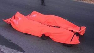 İzmirde otomobil ağaca çarptı: 3 ölü, 1 yaralı