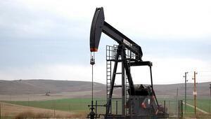 ABD'de petrol sondaj kule sayısı 16 adet azaldı