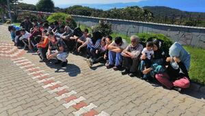 Ağaç altında 106 kaçak göçmen yakalandı