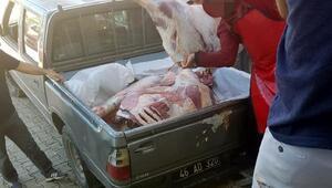 Resmi araçla kurban eti taşımaya soruşturma