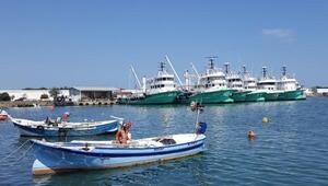 Karadenizli balıkçılar gece yarısı vira bismillah diyor