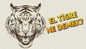 El Tigre ne demek Falcaoya neden El Tigre deniliyor