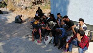 Ayvacıkta 50 kaçak göçmen yakalandı