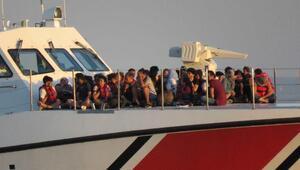 Çanakkalede 280 kaçak göçmen yakalandı