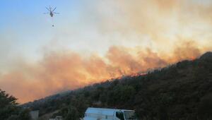 Balıkesirde orman yangını