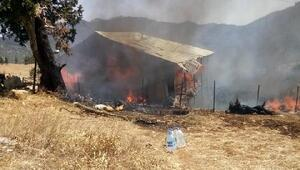 Evde çıkan yangında 55 küçükbaş hayvan yanarak telef oldu