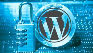 Wordpress ile hazırlanan internet sitelerini bekleyen tehlike
