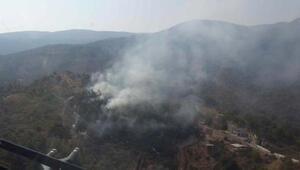 Kemalpaşada ormanlık alanda yangın