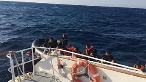 Edirnede 66 kaçak göçmen yakalandı