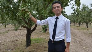 Badem Bursu meyvesini verdi