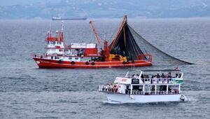 Balıkçıların istavrit mesaisine ilgi