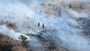 Tokattaki yangında 7 dekar fidanlık zarar gördü
