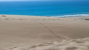 Caretta carettaların kum tepeleriyle ünlü yuvası: Patara