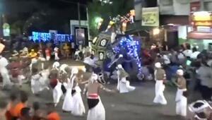 Sri Lankada tören alayındaki fil 18 kişiyi yaraladı