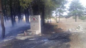 Eski mezarlıkta çıkan yangında ağaç ve mezarlar zarar gördü