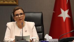 Türkiye-Hollanda JETCO toplantısı yarın Ankarada gerçekleştirilecek