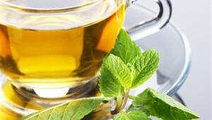 Yeşil çay perisi sağlığımızı koruyor