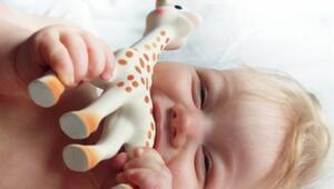 Sophie The Giraffe Artık Türkiye'de