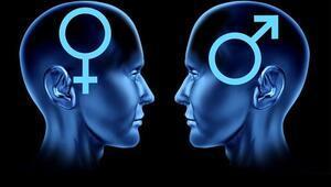 Beyninizin Cinsiyetini Biliyor musunuz(Test)