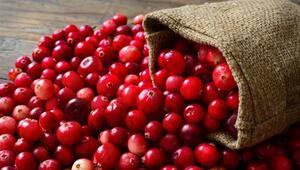 Cranberry (Turna Yemişi) ni Her Gün Tüketirseniz
