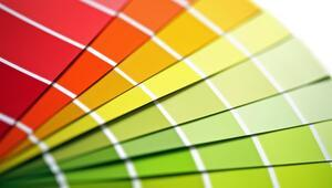 Sizin Renginiz Hangisi