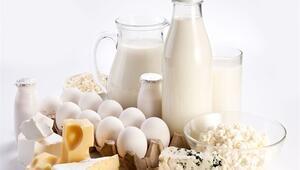 Fazla Protein Böbrekleri Bozuyor