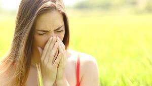 Polen Alerjisine İyi Gelen Öneriler