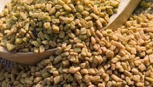 Kepeğe İyi Gelen Doğal Bir Ürün: Çemen Otu