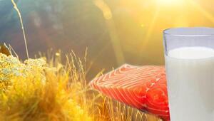 D Vitamini Eksikliğine Somon, Süt Ve Güneş