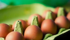 Yumurtayı Buzdolabına Koymak Yanlış mı