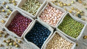 Kış Aylarında Beslenme ve Besin Desteği Kullanımı